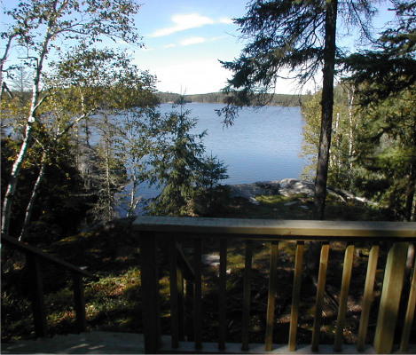 Lake View from Cabin
