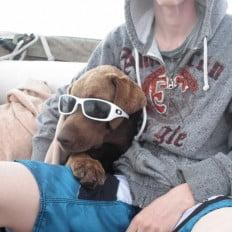 Wally Sunglasses